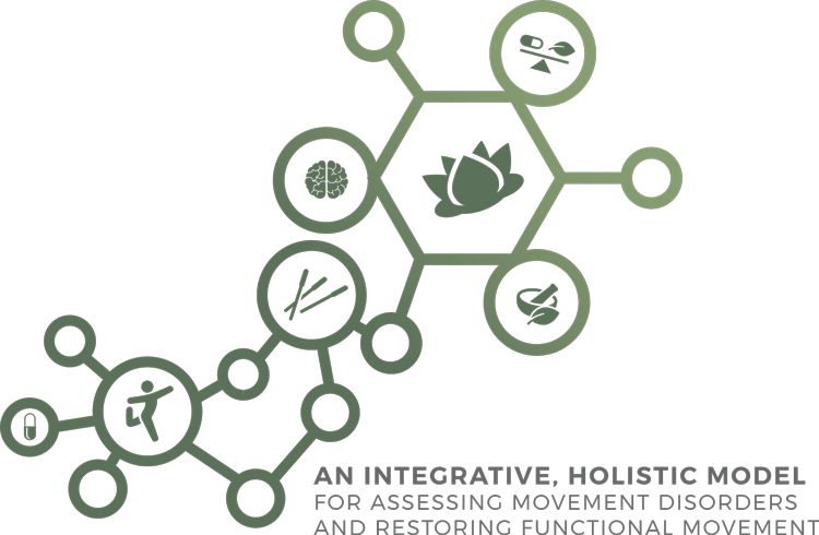 integrative holistic model