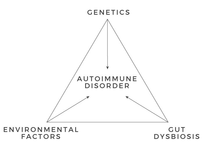 autoimmune disorder diagram
